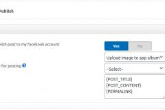 Facebook Auto Publish - metabox settings