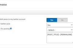 Twitter Auto Publish - MetaBox
